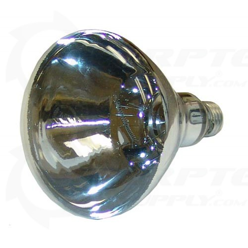 Infrared Lamp 120v 250w For Merco Part 000371sp